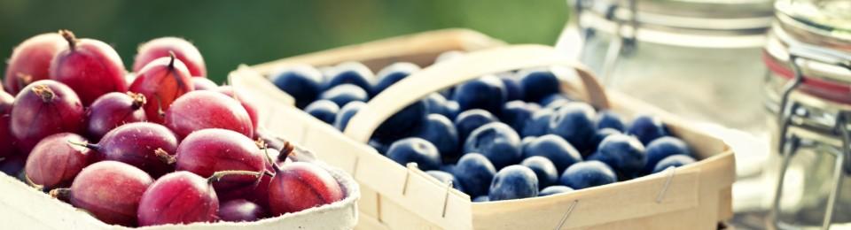 BerryLocal